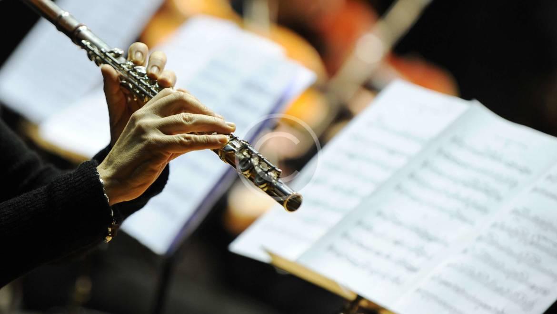 Western Concert flute